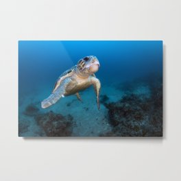 Old Man of the Sea Metal Print