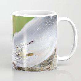 Birds Just Want to Have Fun Coffee Mug