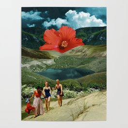 Valley of the flower Poster