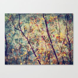 Seasons Circles and Cubes Canvas Print