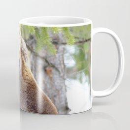 Watercolor Moose Bull 02, Wild Basin, RMNP, Colorado, Head-stump Coffee Mug