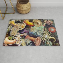 Anemones by Haeckel (Sea Plants and Flowers) Rug