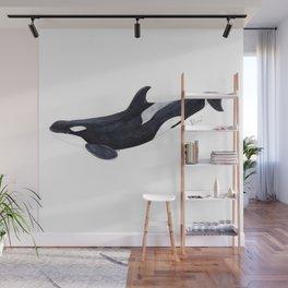 Orca killer whale Wall Mural