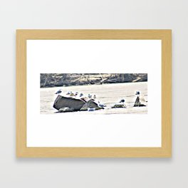 Seagull Rock Framed Art Print