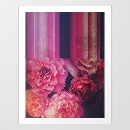 FLOWER SHOWER 34 Art Print