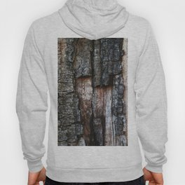 Tree Bark close up Hoody