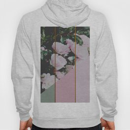 Pink Roses Palette Hoody