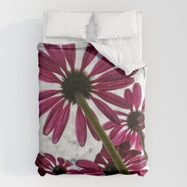 Pink Coneflower Daisy Comforters