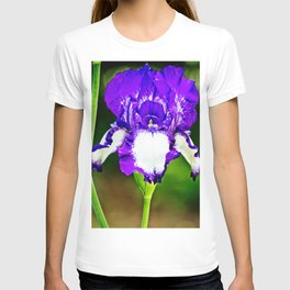 Purple and Blue Iris T-shirt