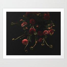 deep and dark Dahlias Art Print