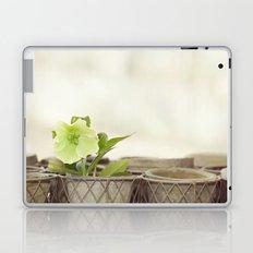 Heavenly Hellebore Laptop & iPad Skin