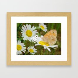 Butterfly :: Rings of Gold Framed Art Print