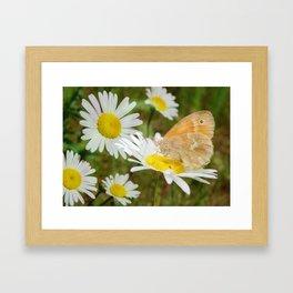 Butterfly :: Rings of Gold Framed Art Print