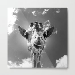 Cool Giraffe Black and White Metal Print