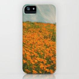 California Poppies 016 iPhone Case