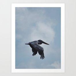 Pelican In The Sky Art Print