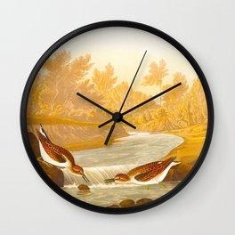 Little Sandpiper Bird Wall Clock