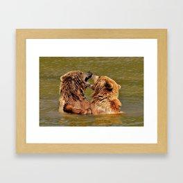 Brown Bears Framed Art Print
