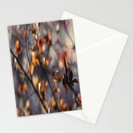 Spring Feelings Stationery Cards