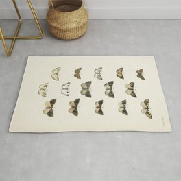 Naturalist Moths Rug