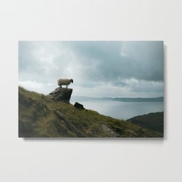 Posing sheep at the Old Man of Storr| Sunrise at the Isle of Skye, Scotland| Nature travel photography| Fine art Metal Print