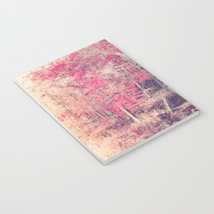 Rasberry Notebook