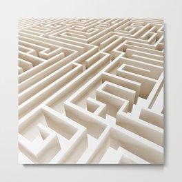 Labirinth Metal Print