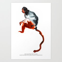 Miss Waldron's Red Colobus Art Print