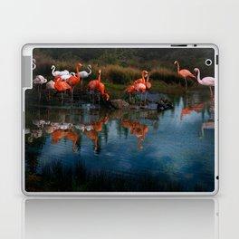 Flamingo Convention Laptop & iPad Skin