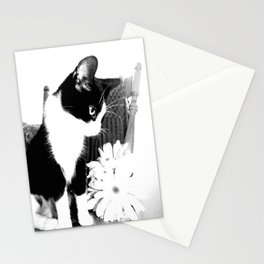 maxine. Stationery Cards