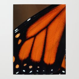 Wing of a Monarch Poster