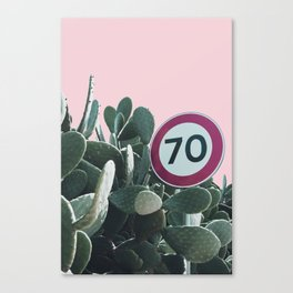 Cactus Route Canvas Print