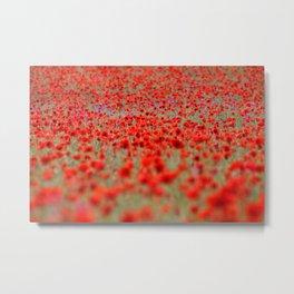 Field of Poppies | Mohnblumenfeld Metal Print