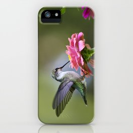 Tranquil Hummingbird iPhone Case