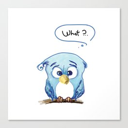 Funny owl Canvas Print