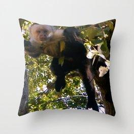 Capuchin Gaze Throw Pillow