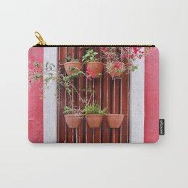 San Juan Windows Carry-All Pouch
