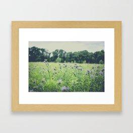 Wildflower Field Framed Art Print