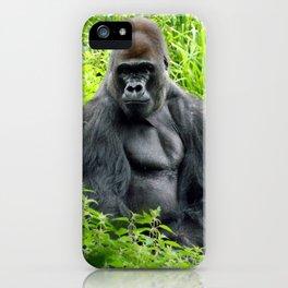 Pertinax iPhone Case