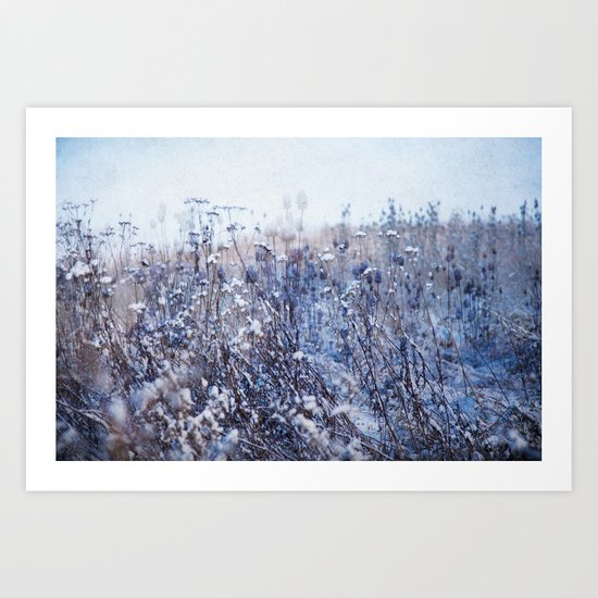 Winter Field 3 Art Print