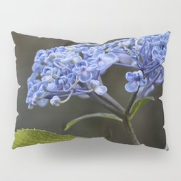 Hydrangea in Blue Pillow Sham