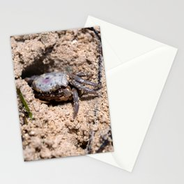 Crab No.1 Stationery Cards