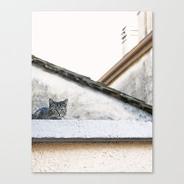 Cat on the Roof Canvas Print