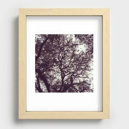 stiffs Recessed Framed Print