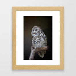 Lovely cute owl Framed Art Print