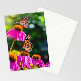 Morning Monarchs. Butterfly Photograph Stationery Cards