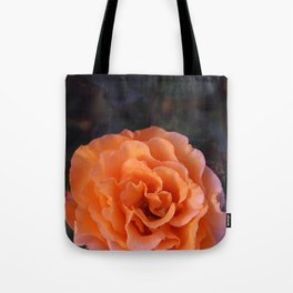 Holland Park Rose Tote Bag