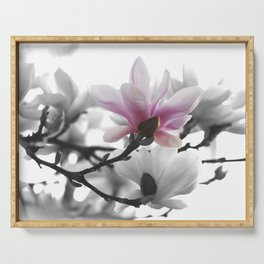 Springtime magnolia painting in nature Serving Tray