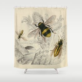 Naturalist Bee And Wasps Shower Curtain