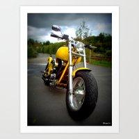 harley Art Prints featuring Harley by elkart51